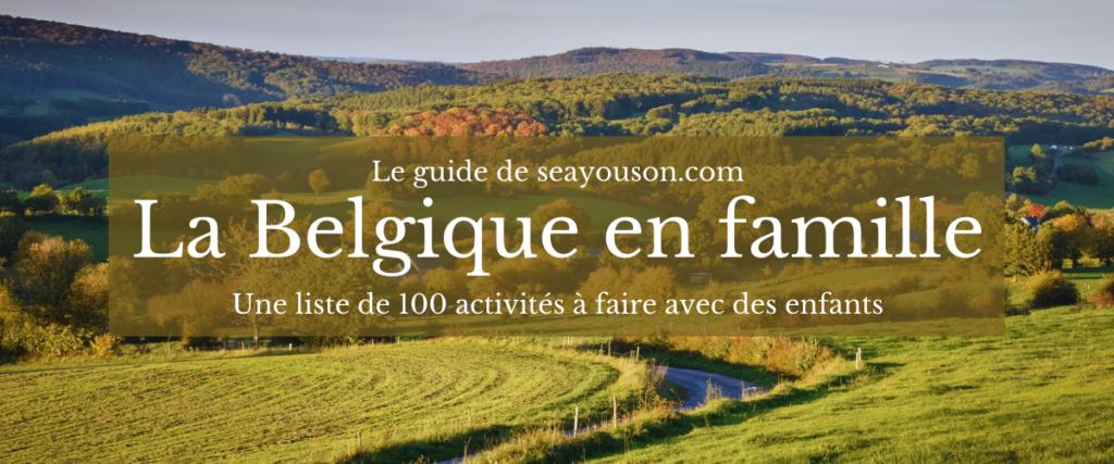 la belgique en famille guide seayouson 100 activitésà faire avec des enfants