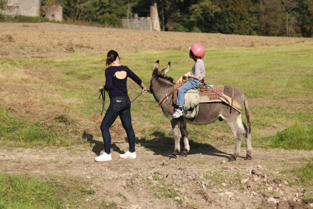 randonnée avec un âne : une activité géniale à faire en famille