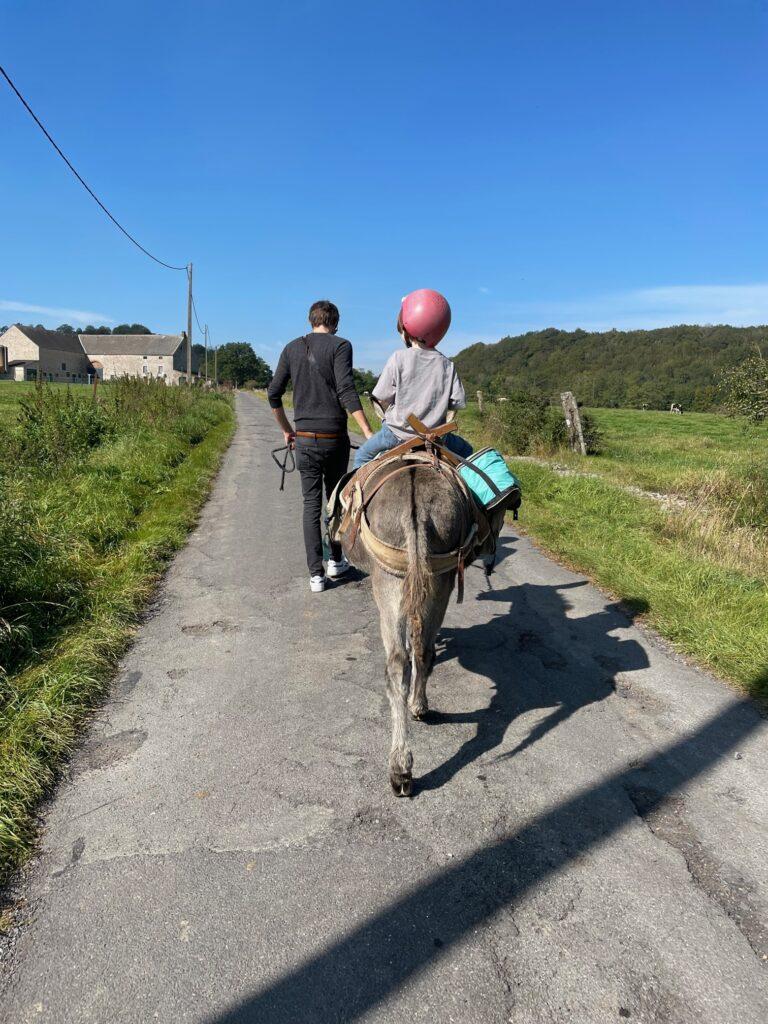 randonnée avec un âne à sautour (philippeville)
