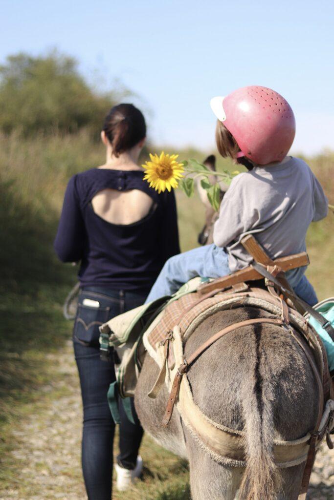 randonnée avec un âne balad'ânes de l'hermeton sautour